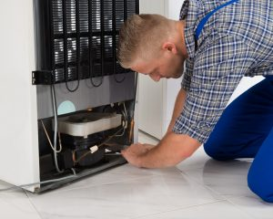 An appliancerepair specialist fixes your fridge issues