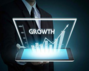 Expand business on a profitable growth