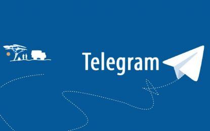 HOW TO INCREASE TELEGRAM FOLLOWERS?